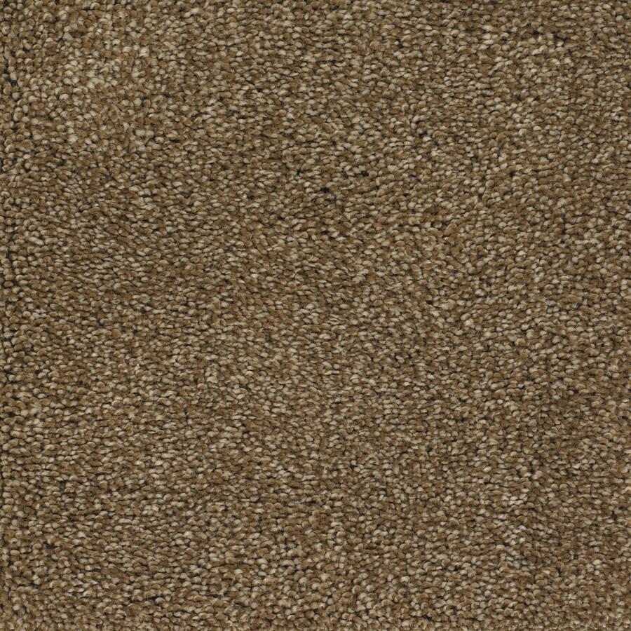 STAINMASTER Pleasant Point TruSoft Gazelle Plus Carpet Sample