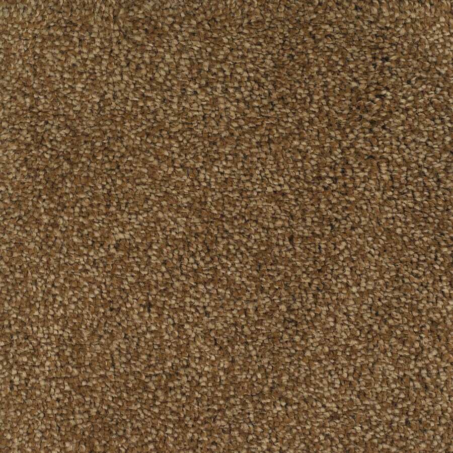 STAINMASTER Pleasant Point TruSoft Smooth Stone Plus Carpet Sample