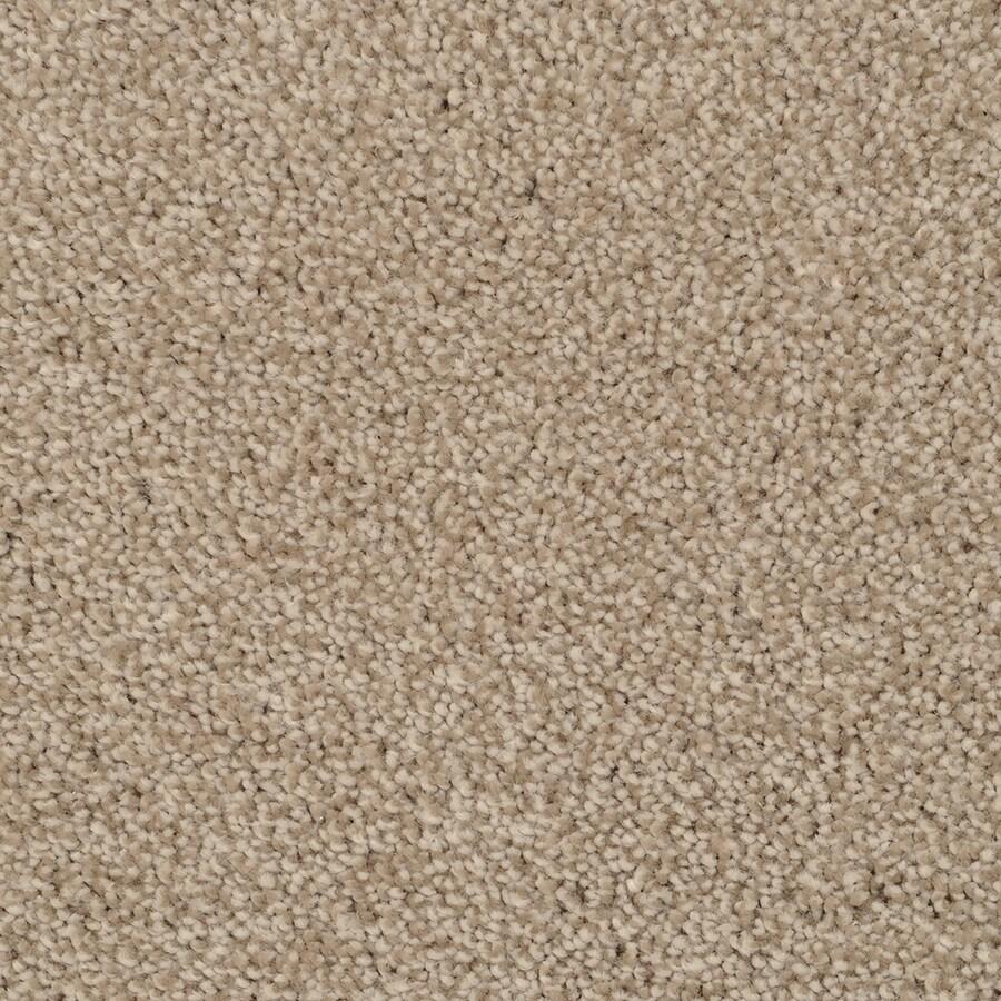 STAINMASTER Shafer Valley Trusoft Zumba Plus Carpet Sample
