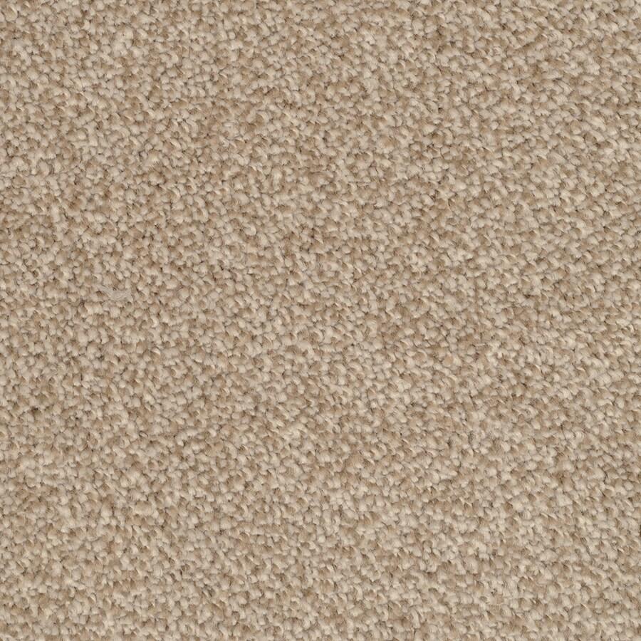 STAINMASTER Shafer Valley Trusoft Reverse Plus Carpet Sample