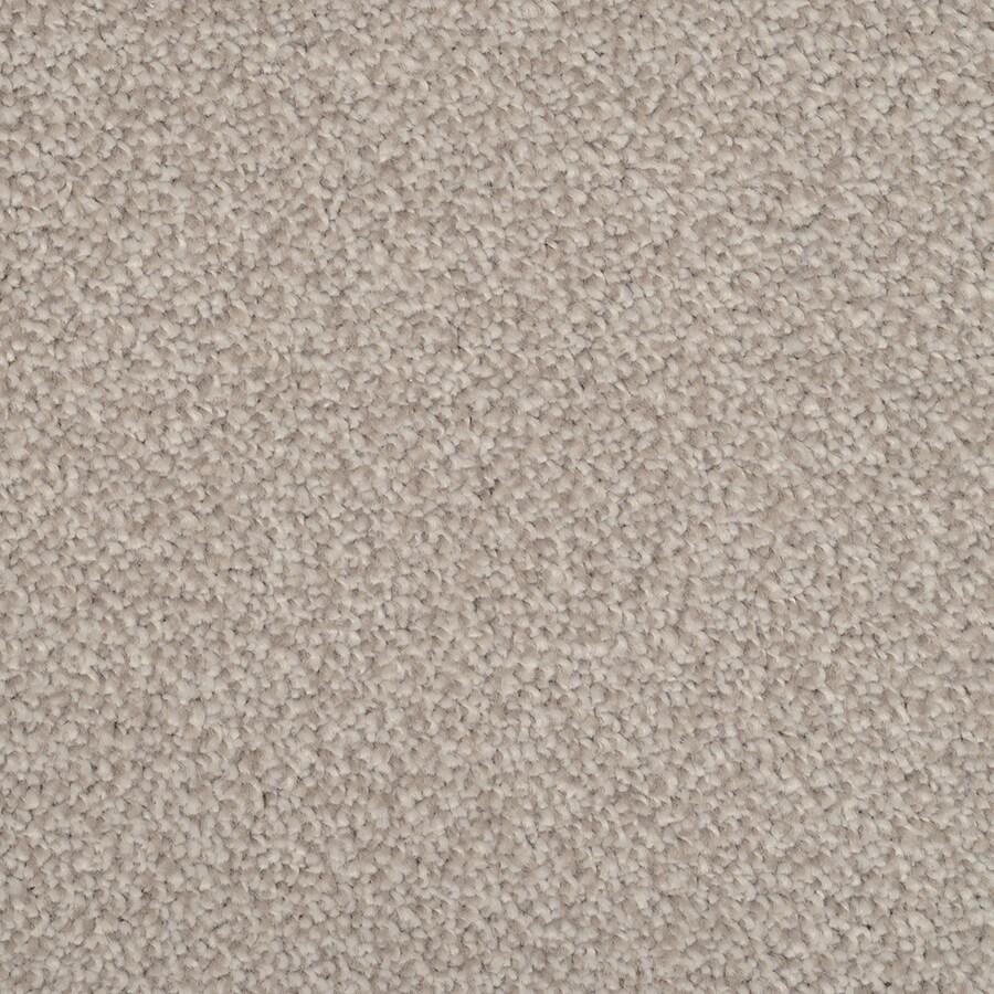 STAINMASTER Shafer Valley Trusoft Pewter Plus Carpet Sample