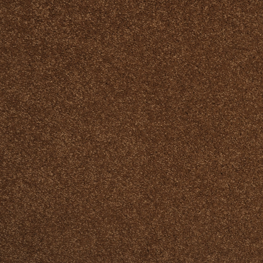 STAINMASTER Best of Class TruSoft Double Khaki Cut and Loop Carpet Sample