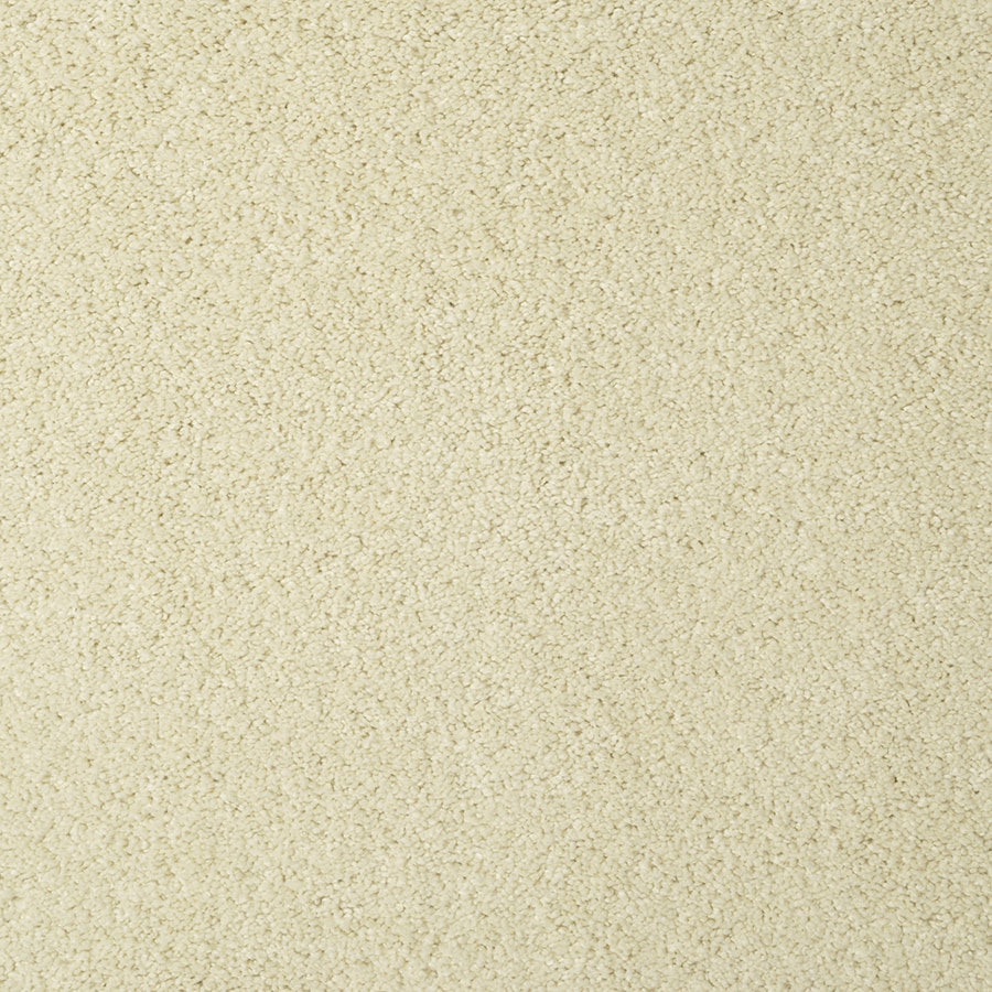 STAINMASTER Best of Class TruSoft Sawgrass Cut and Loop Carpet Sample