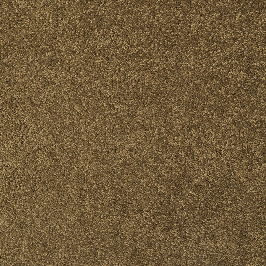 STAINMASTER Best of Class TruSoft Parakeet Cut and Loop Carpet Sample