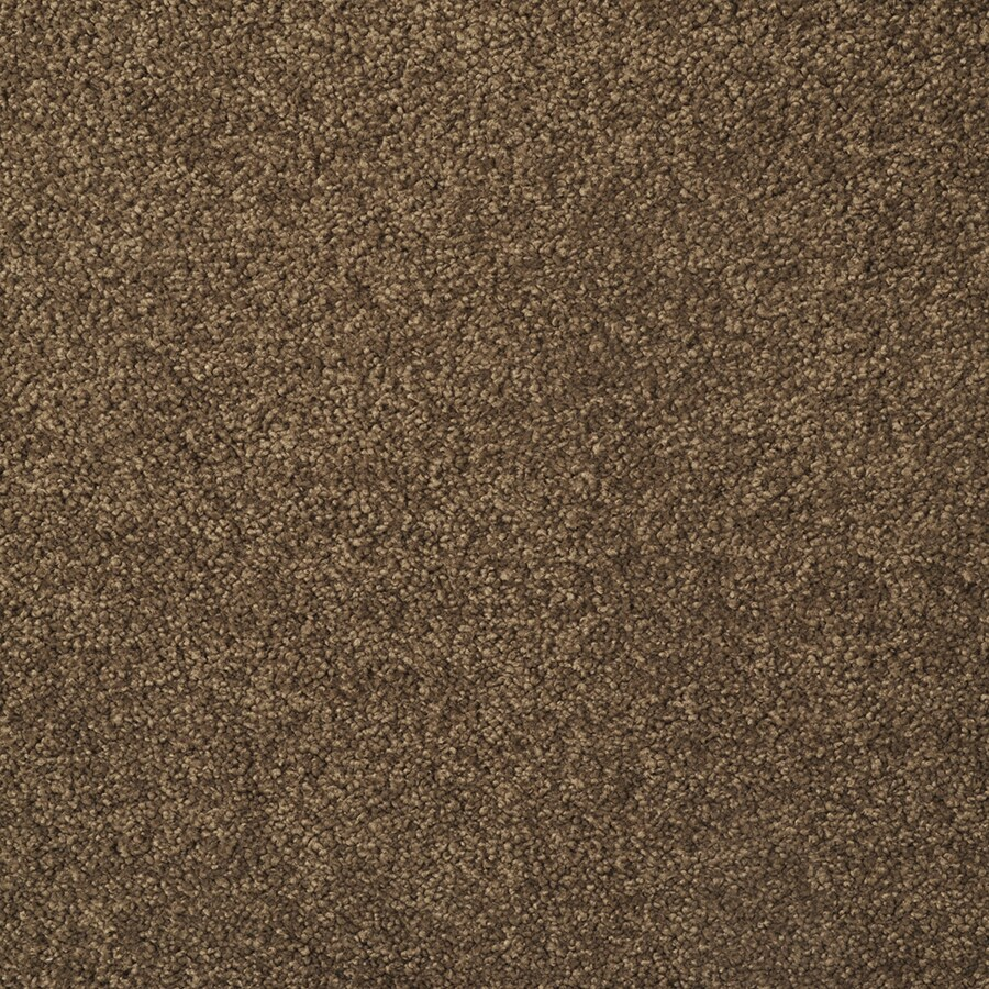 STAINMASTER Best of Class TruSoft Brown Log Cut and Loop Carpet Sample