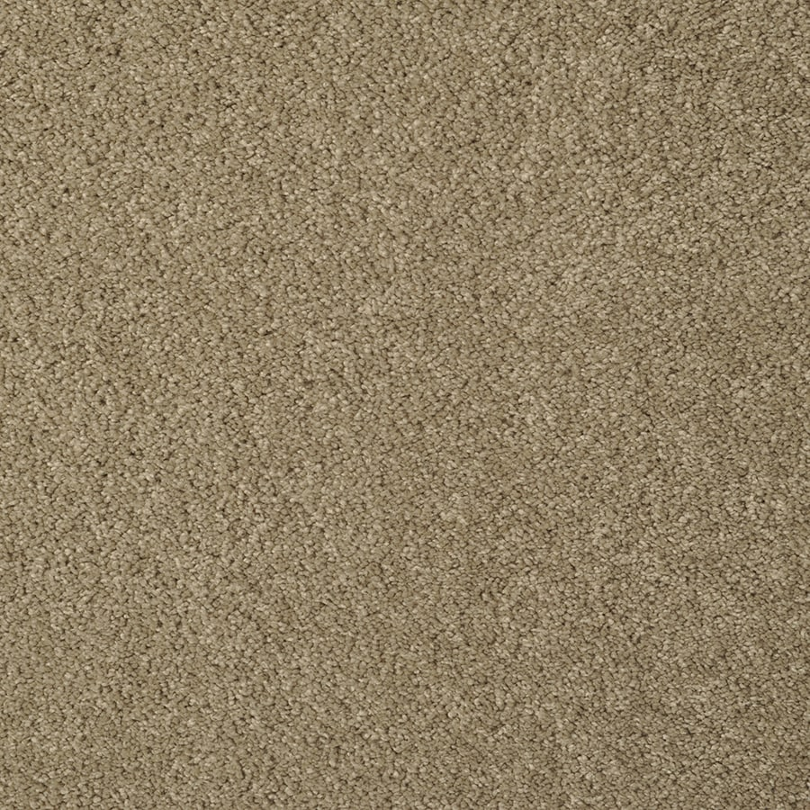 STAINMASTER Best of Class TruSoft Elmwood Cut and Loop Carpet Sample