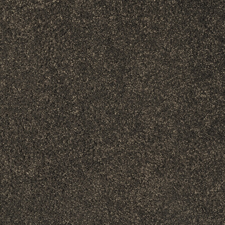 STAINMASTER Best of Class TruSoft Square Dance Cut and Loop Carpet Sample