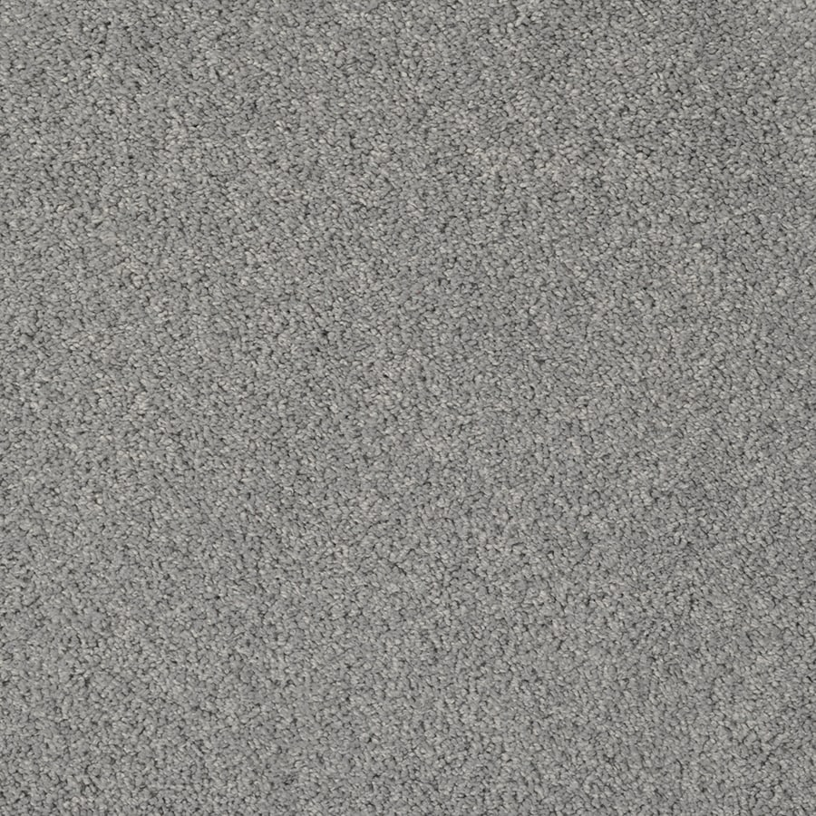 STAINMASTER Best of Class TruSoft Hour Glass Cut and Loop Carpet Sample