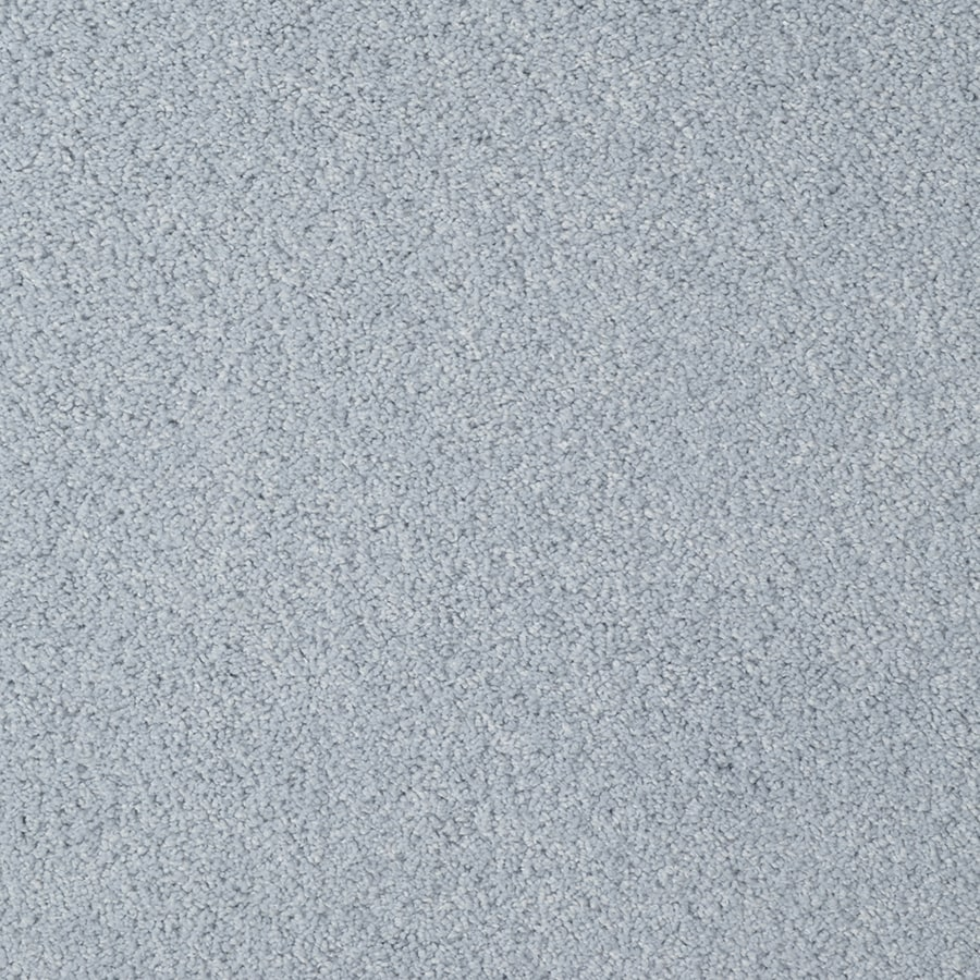STAINMASTER Best of Class TruSoft Blue Steel Cut and Loop Carpet Sample