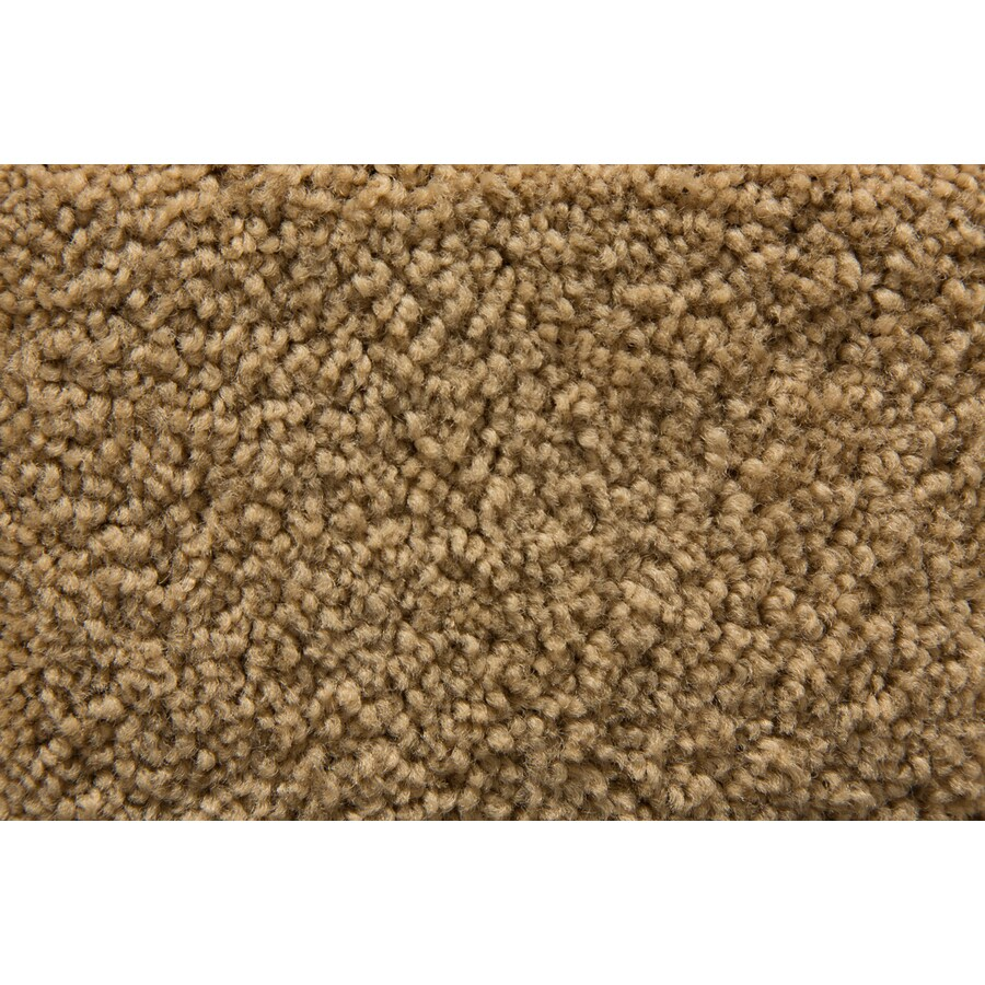 STAINMASTER Savoy Active Family Suede Plus Carpet Sample