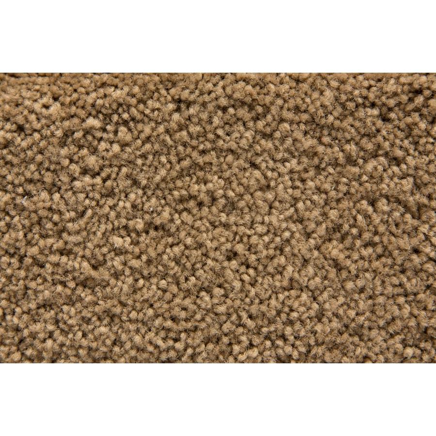 STAINMASTER Savoy Active Family Bungalow Plus Carpet Sample