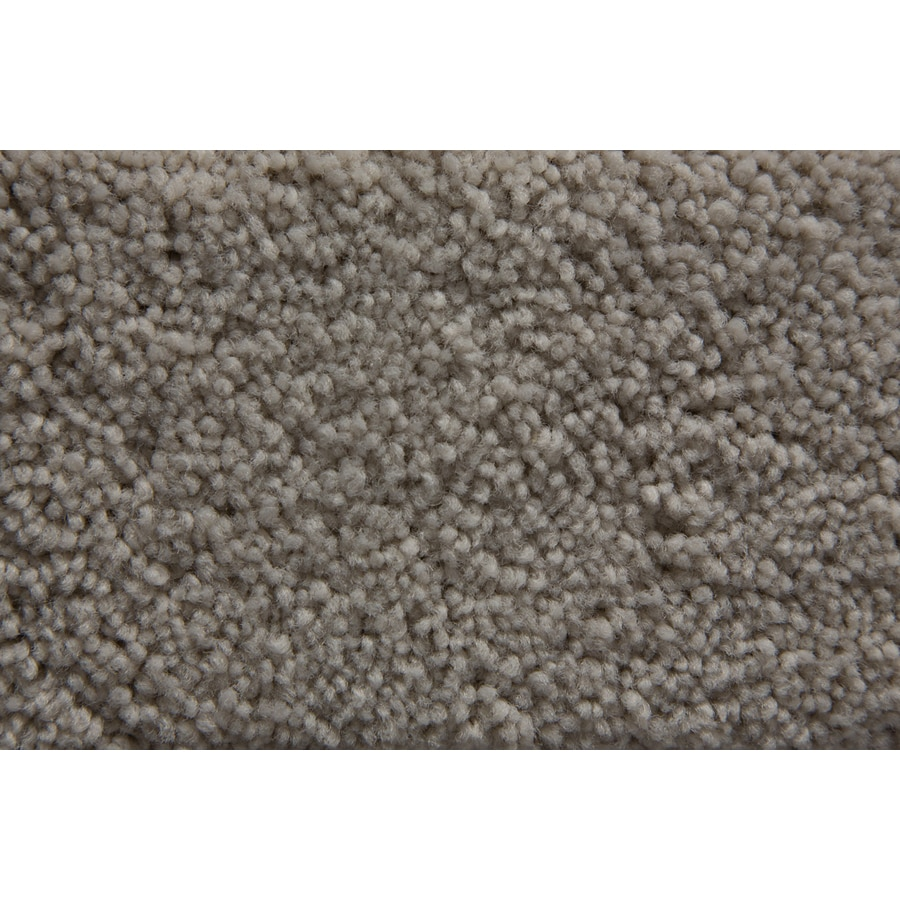 STAINMASTER Savoy Active Family Silica Plus Carpet Sample