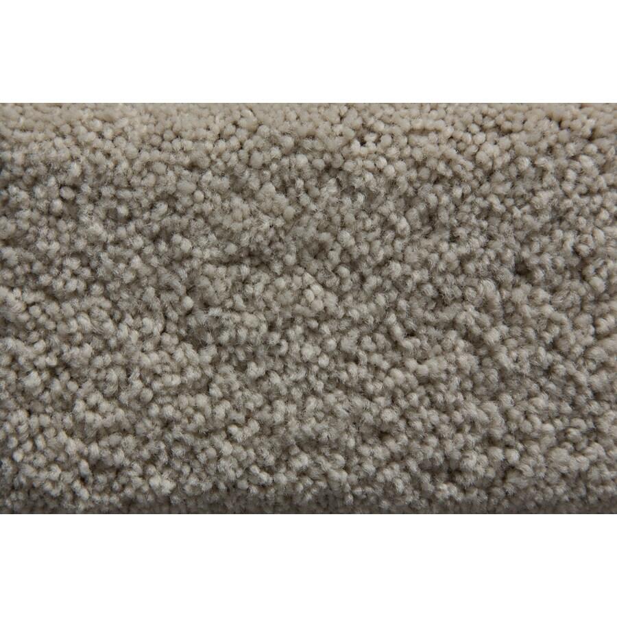 STAINMASTER Savoy Active Family Whisper Plus Carpet Sample