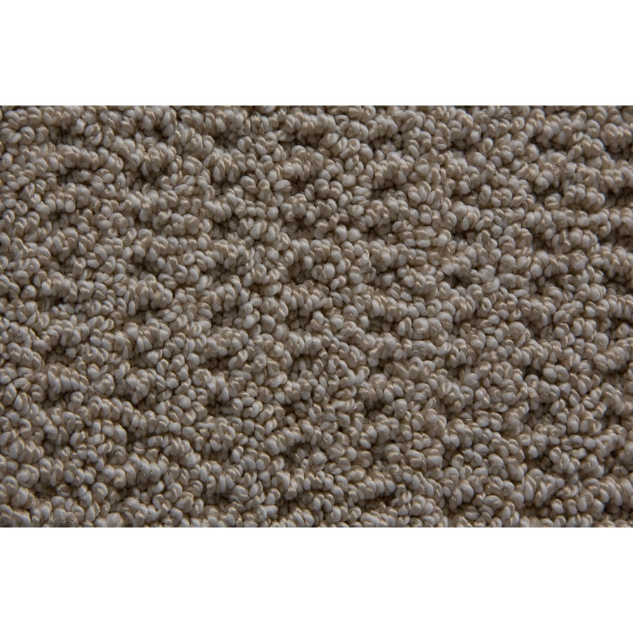 STAINMASTER Compassion TruSoft Antique Berber Carpet Sample