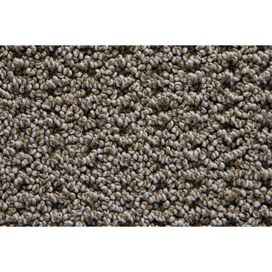 STAINMASTER Compassion TruSoft Stardust Berber Carpet Sample
