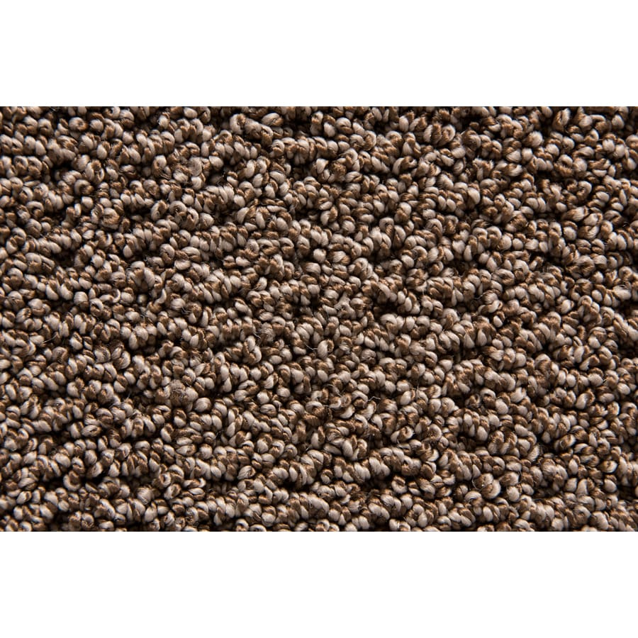 STAINMASTER Merriment TruSoft Burrow Berber Carpet Sample