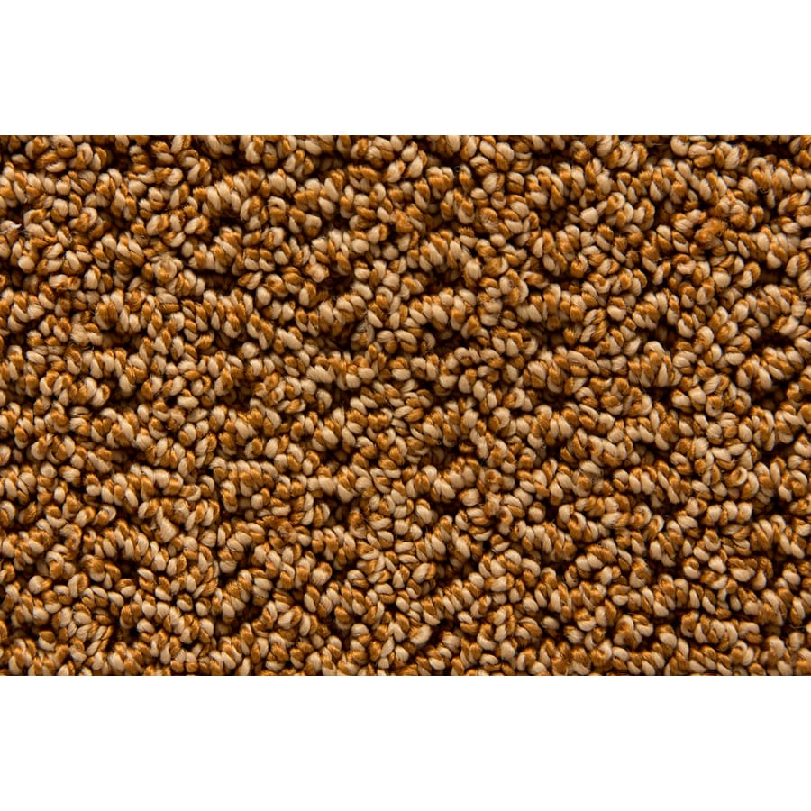 STAINMASTER Merriment TruSoft Sachet Berber Carpet Sample