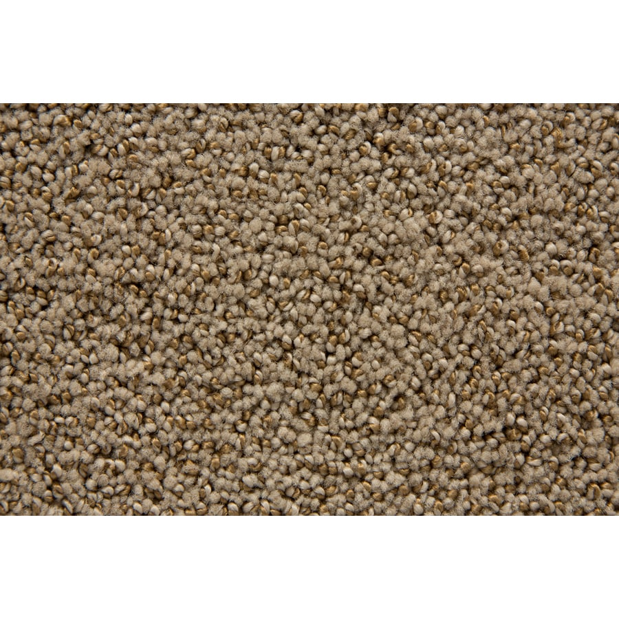 STAINMASTER Mysterious TruSoft Portabello Cut and Loop Carpet Sample