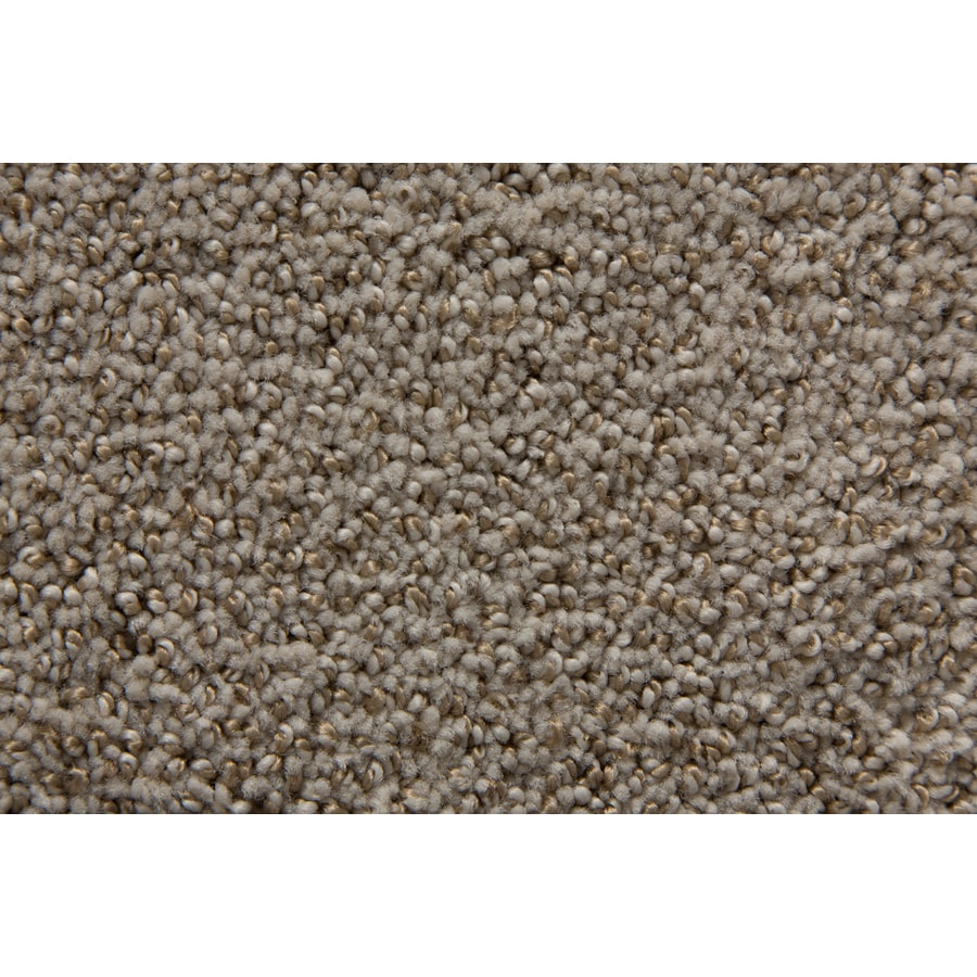 STAINMASTER Mysterious TruSoft Bramble Cut and Loop Carpet Sample