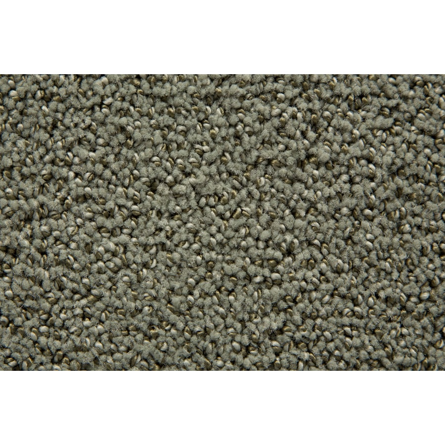 STAINMASTER Mysterious TruSoft Eucalyptus Cut and Loop Carpet Sample