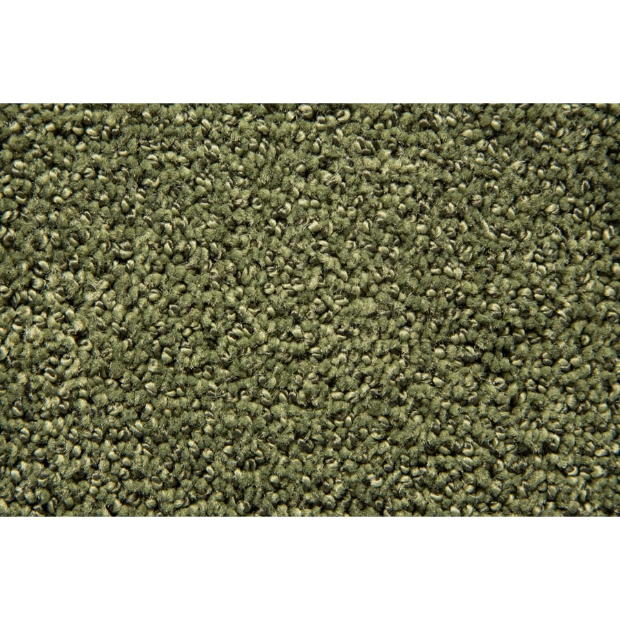 STAINMASTER Mysterious TruSoft Verdant Cut and Loop Carpet Sample