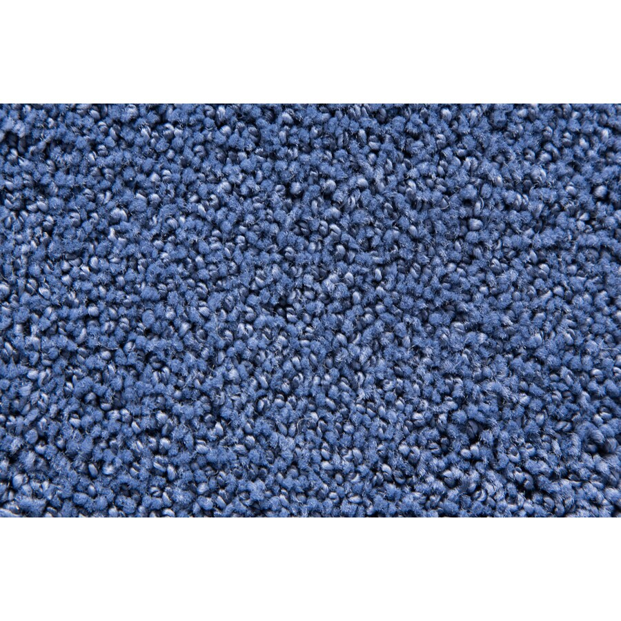 STAINMASTER Mysterious TruSoft Nautica Cut and Loop Carpet Sample