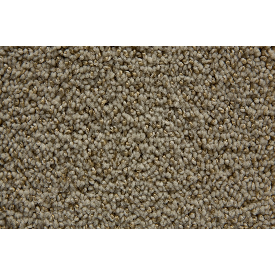 STAINMASTER Mixology TruSoft Puritan Cut and Loop Carpet Sample