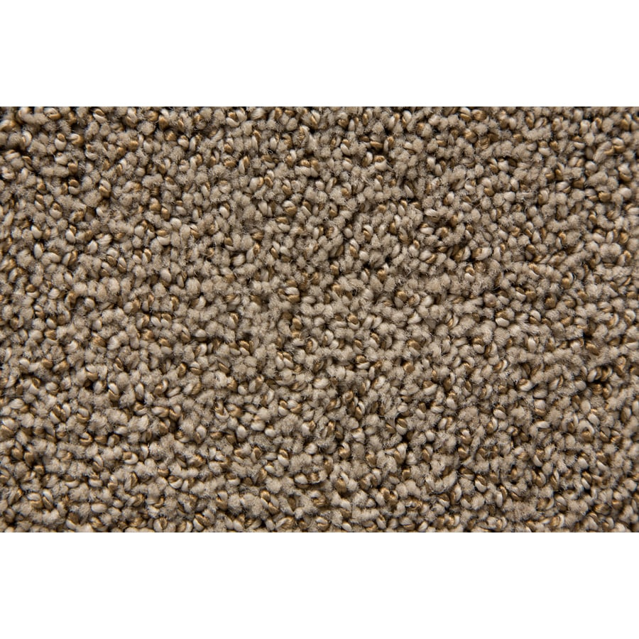 STAINMASTER Mixology TruSoft Foxhunt Cut and Loop Carpet Sample