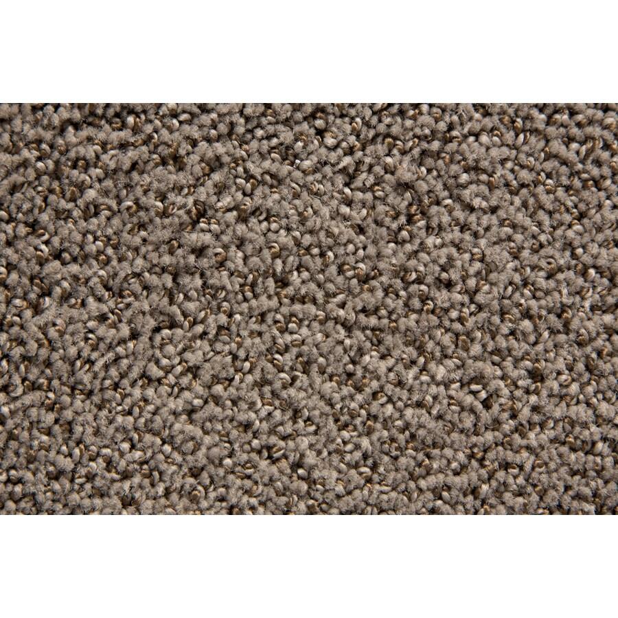STAINMASTER Mixology TruSoft Armada Cut and Loop Carpet Sample