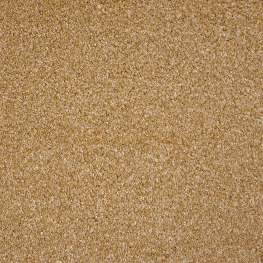 STAINMASTER Purebred Petprotect Slicker Plus Carpet Sample