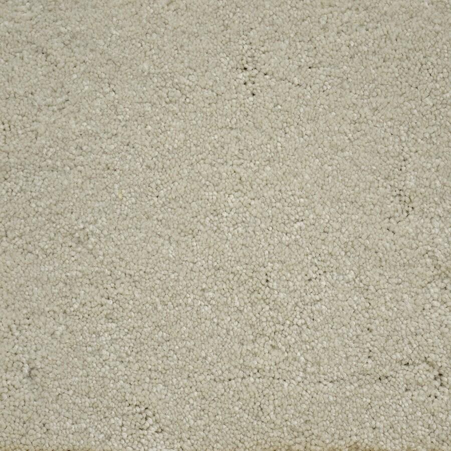 STAINMASTER Purebred Petprotect Companion Plus Carpet Sample