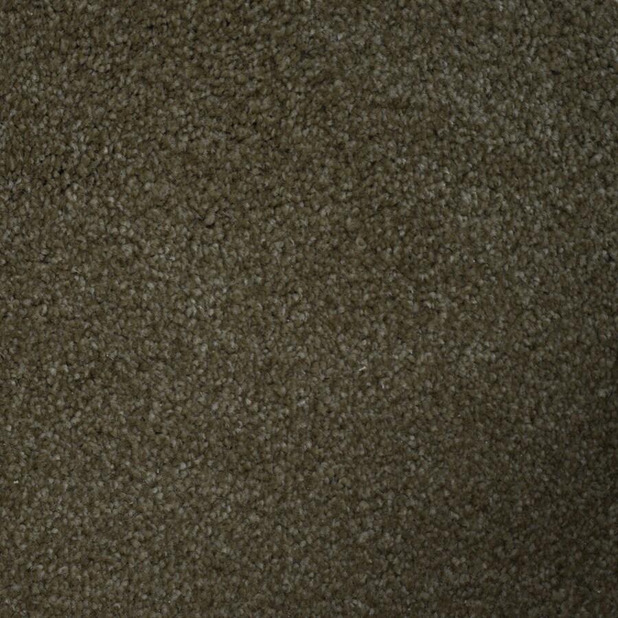 STAINMASTER Purebred Petprotect Groom Plus Carpet Sample