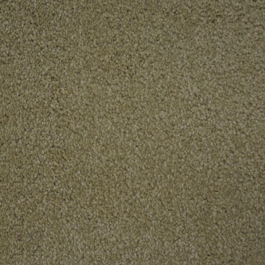 STAINMASTER Purebred Petprotect Secretary Plus Carpet Sample