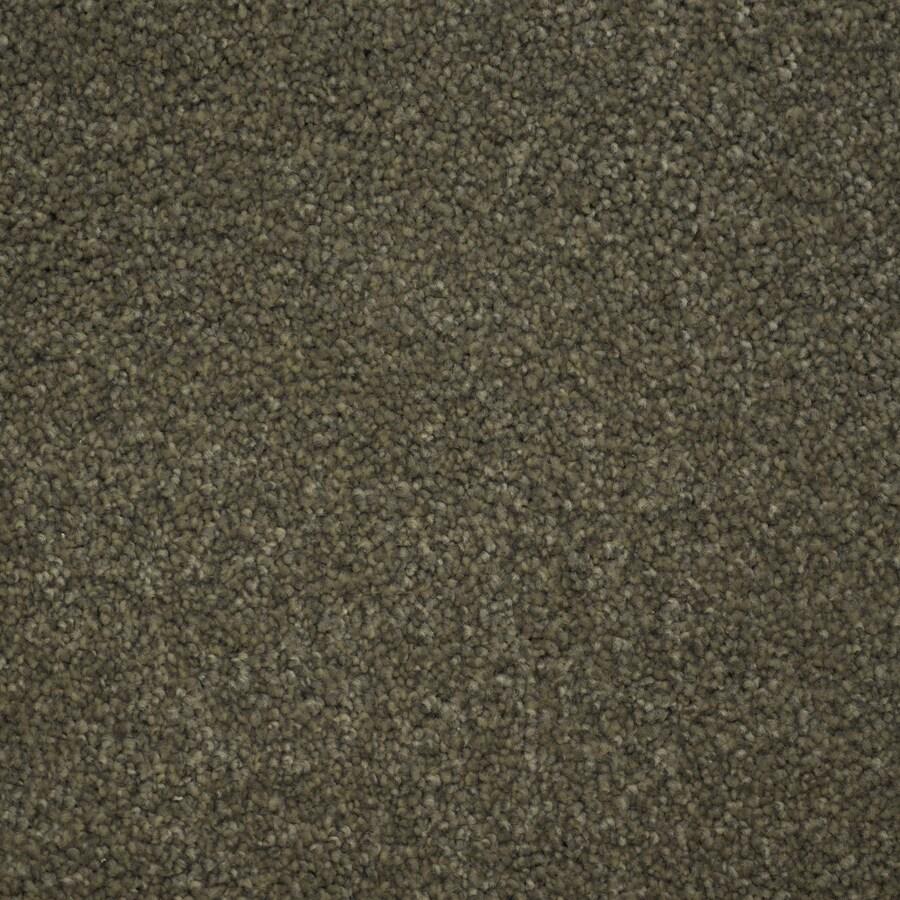 STAINMASTER Purebred Petprotect Kennel Plus Carpet Sample