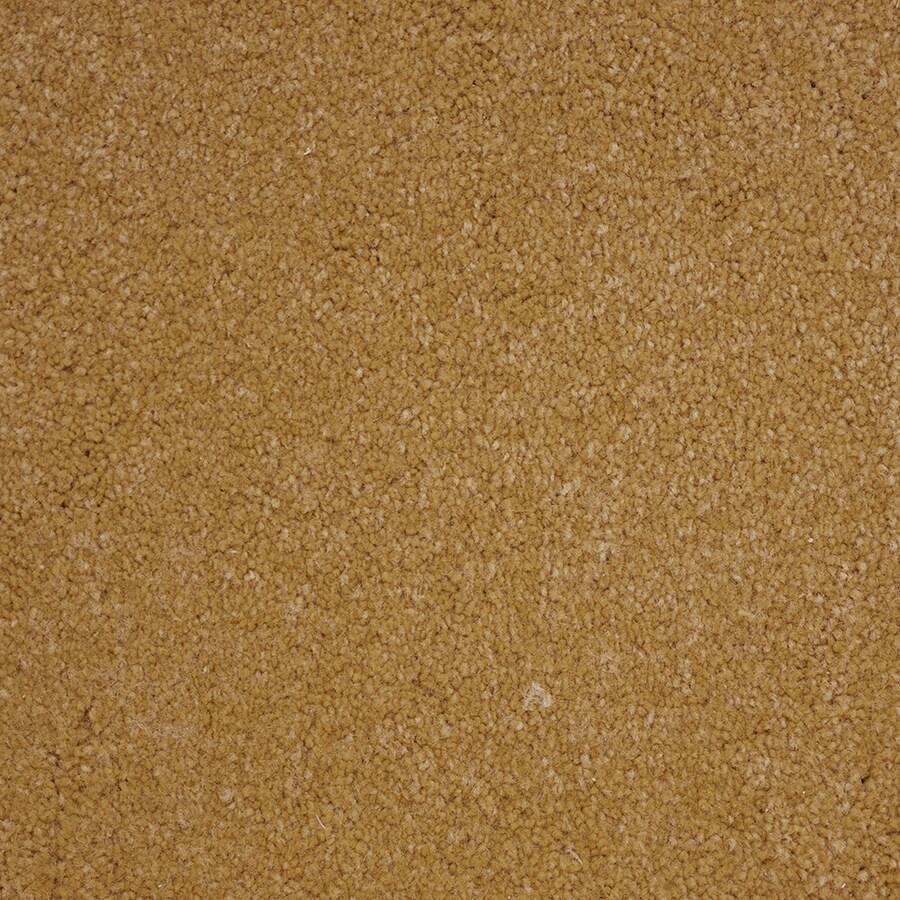 STAINMASTER Pedigree PetProtect Steward Plus Carpet Sample