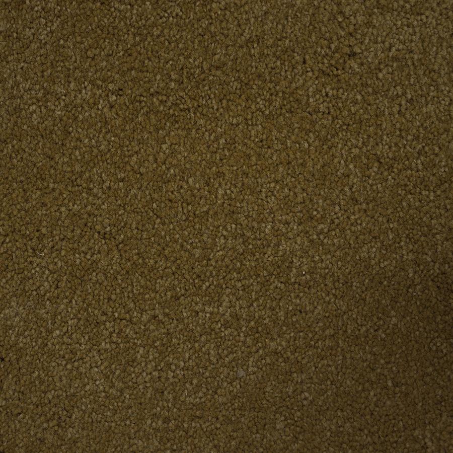 STAINMASTER Pedigree PetProtect Points Plus Carpet Sample