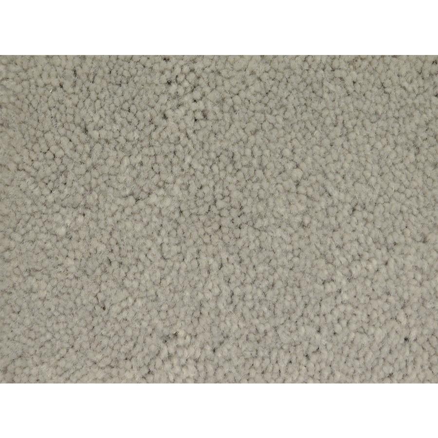 STAINMASTER Pedigree PetProtect Class Plus Carpet Sample