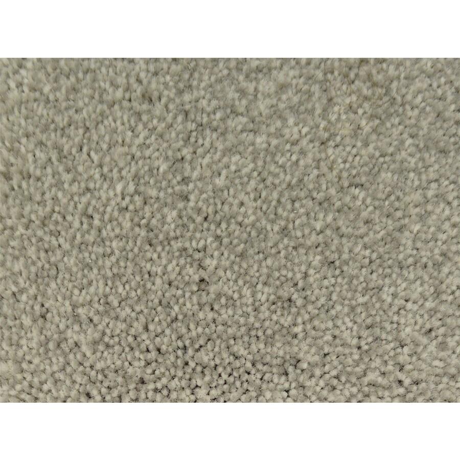STAINMASTER Pedigree PetProtect Canine Plus Carpet Sample