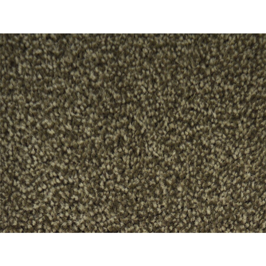 STAINMASTER Best In Show PetProtect Green Plus Carpet Sample