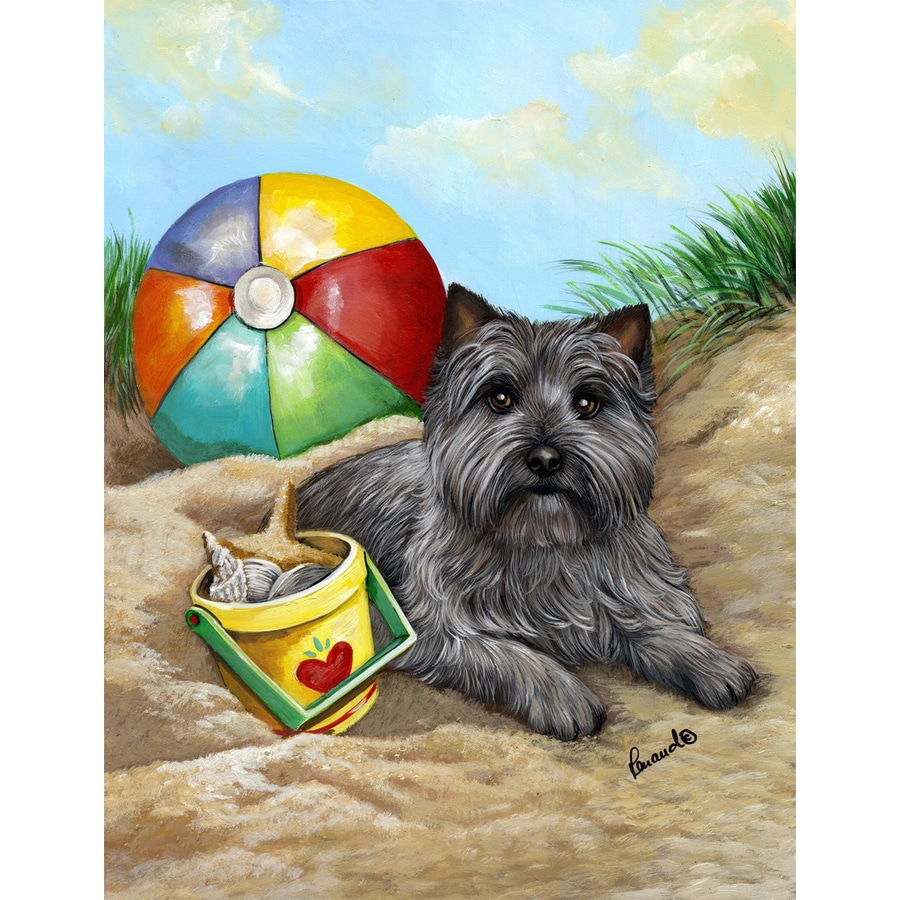 Precious Pet Paintings 1.5-ft x 1.04-ft Cairn Terrier Beach Flag