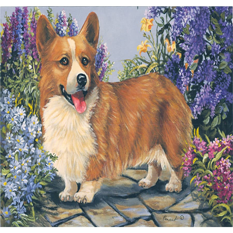 Precious Pet Paintings 1.5-ft x 1.04-ft Corgi Spring Flag