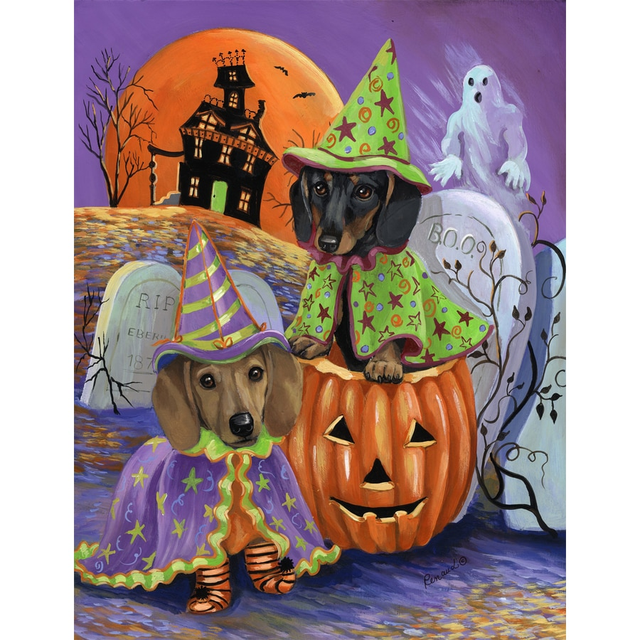 Precious Pet Paintings 1.5-ft x 1.04-ft Dachshund Halloween Flag