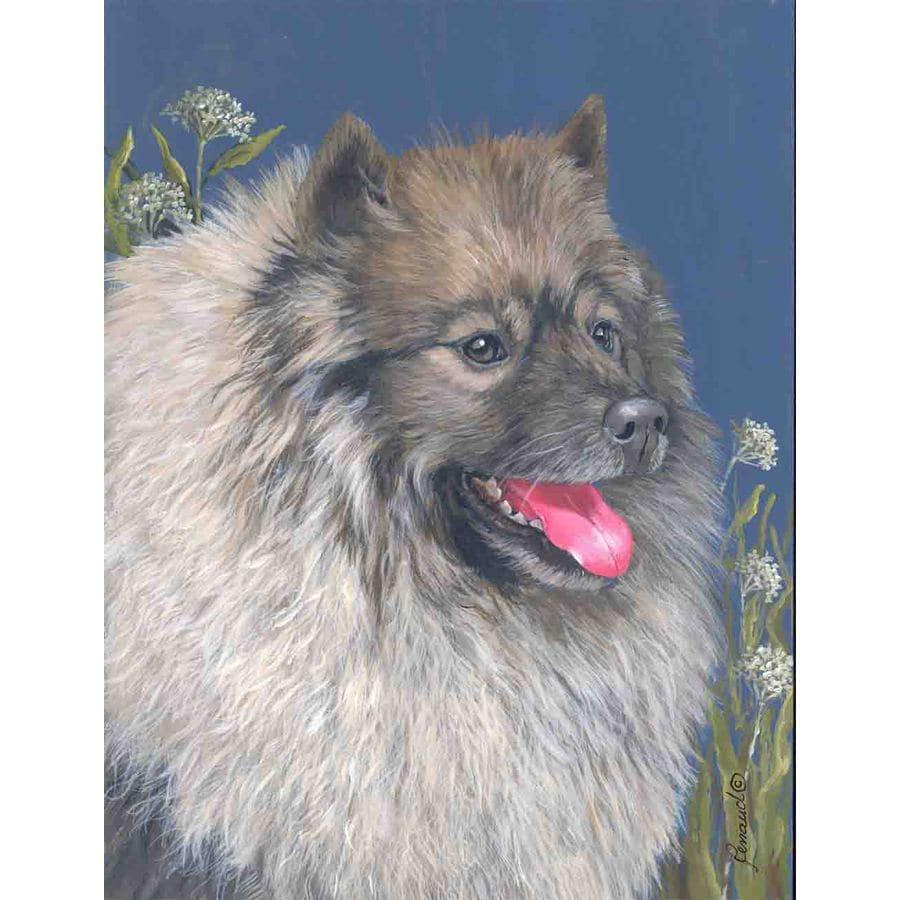 Precious Pet Paintings 1.5-ft x 1.04-ft Keeshond Spring Flag