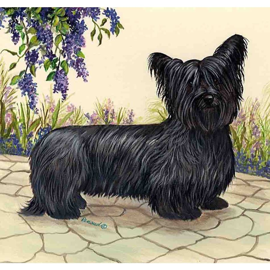 Precious Pet Paintings 1.5-ft x 1.04-ft Skye Terrier Spring Flag