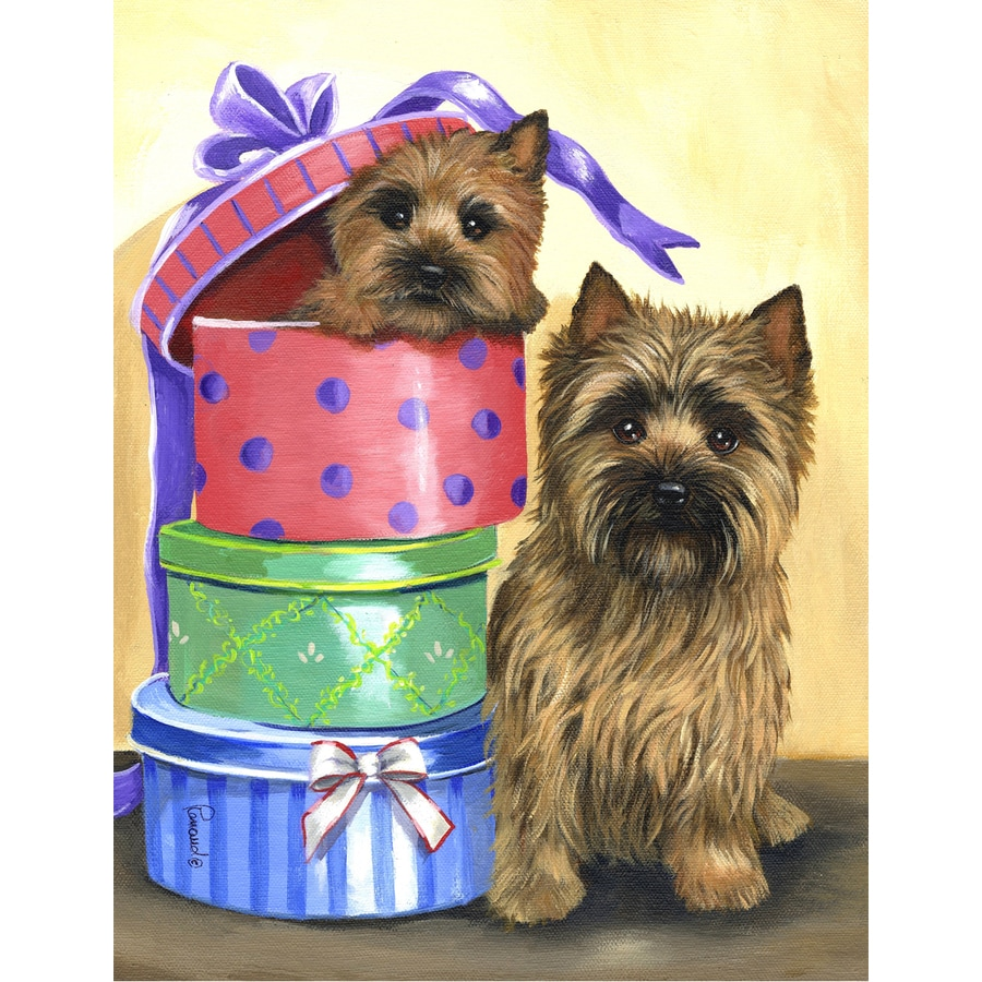 Precious Pet Paintings 3.33-ft x 2.33-ft Cairn Terrier Celebration Flag
