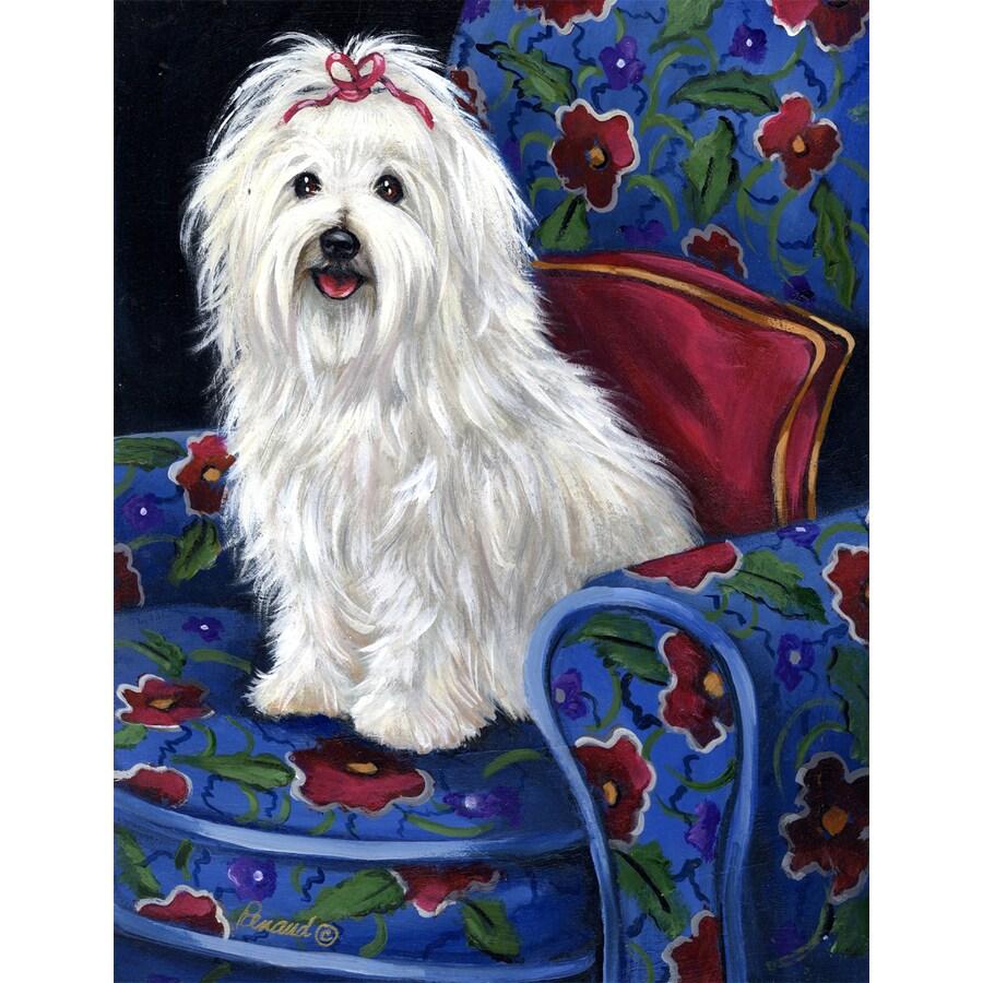 Precious Pet Paintings 3.33-ft x 2.33-ft Coton De Tulear Spring Flag