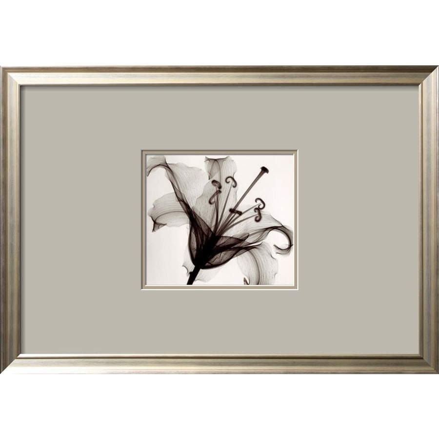 Shop artcom 27 in w x 19 in h framed floral and botanical for Kitchen cabinets lowes with wall art flower
