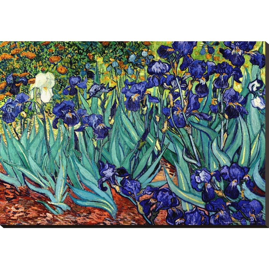 art.com 40-in W x 28-in H Canvas Floral and Botanical Wall Art