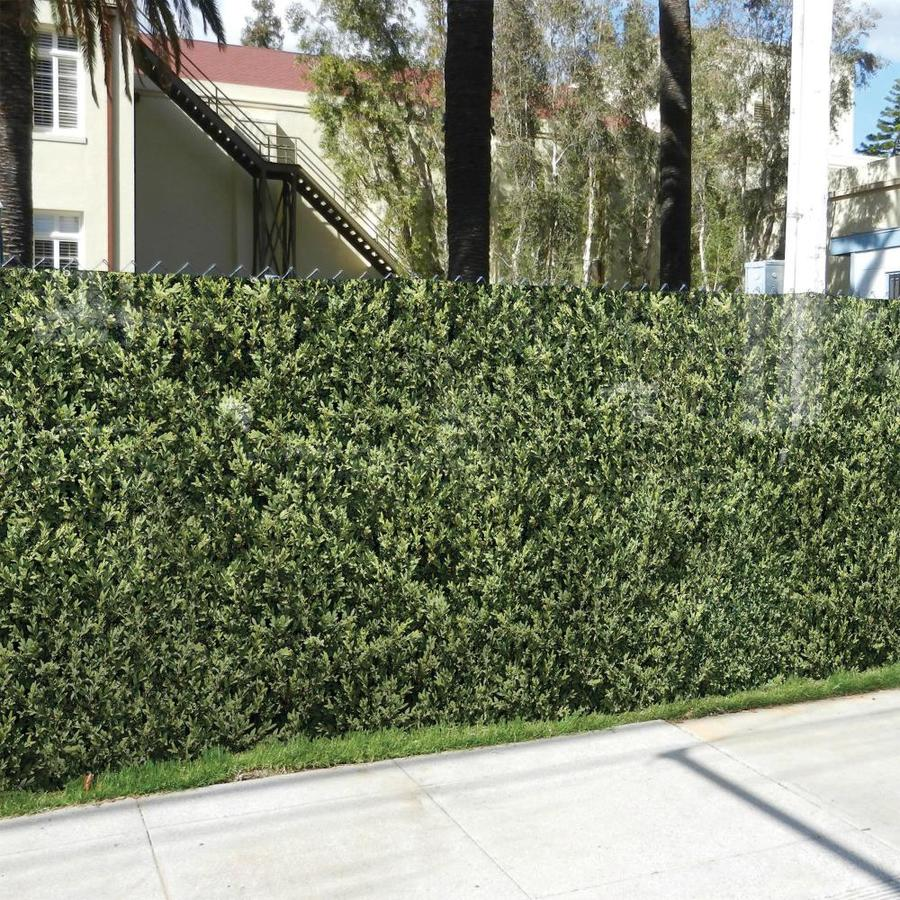 FenceScreen Leaf Hedge Leaf Hedge Graphic Chain-Link Fence Privacy Screen (Fits Common Fence Height: 5-Ft; Actual: 25-ft x 4.667 Feet)