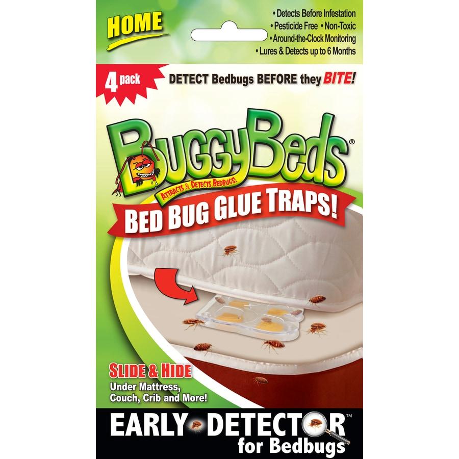 BuggyBeds Buggybeds Bed Bug Glue Traps